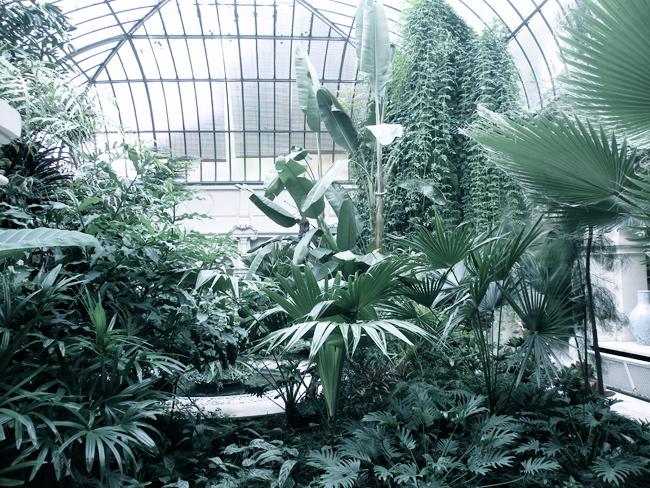Jardin d 39 hiver for Decoration jardin d hiver