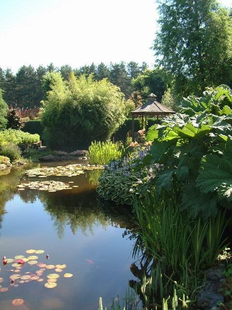 le bassin écolo G-presentation-commercial-des-piscines-ecologiques