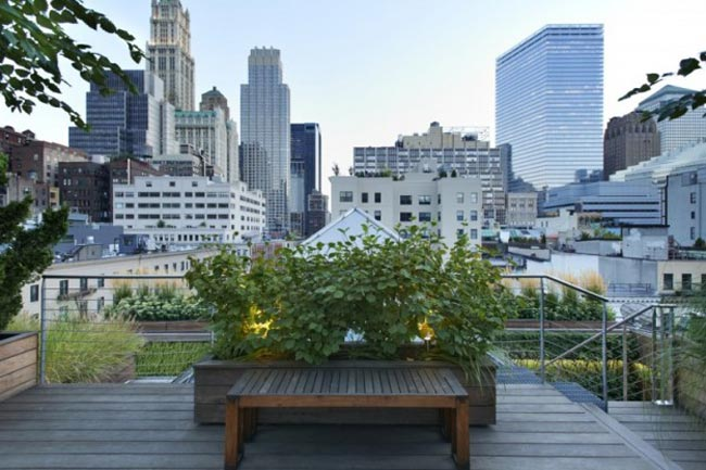 Jardin/terrasse au niveau du toit.  TERRASSE-TOITS-NEW-YORK