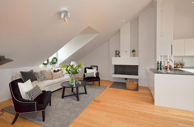 Grand appartement loft 4